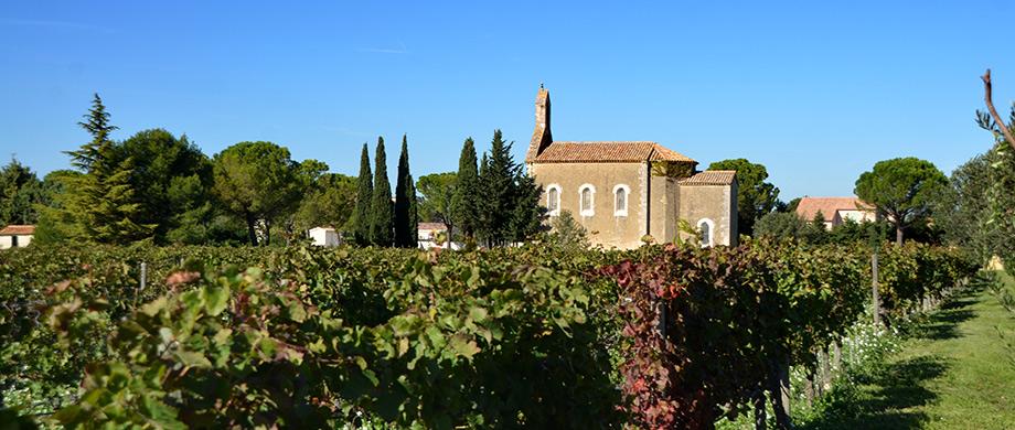 le village viticole de sainte c cile les vignes haut vaucluse provence. Black Bedroom Furniture Sets. Home Design Ideas
